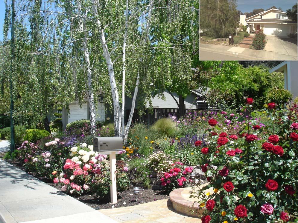 Color conversion garden for Garden conversion