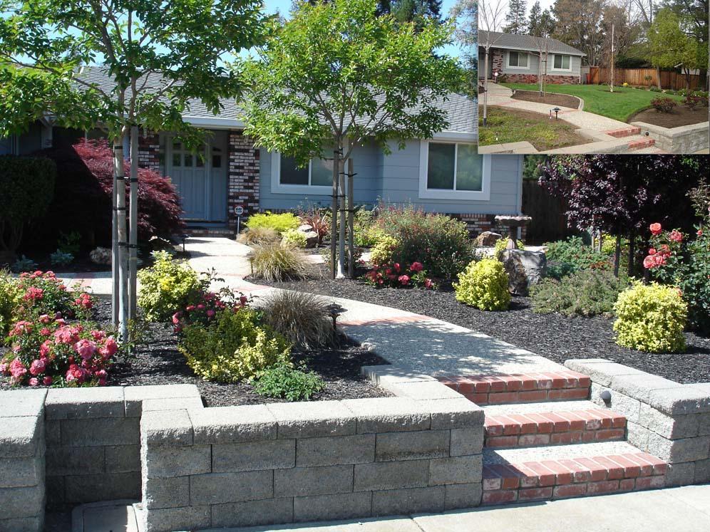 Raised planter and walk conversion garden for Garden conversion